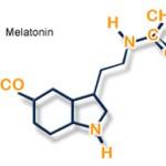 Чудо гормон — мелатонин