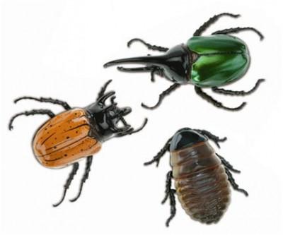 Фото Сонник жуки под кожей