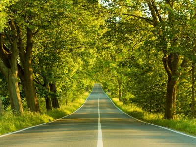 К чему снится дорога. Сонник дорога
