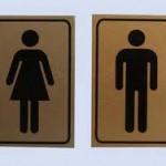 К чему снится туалет? Сонник Туалет