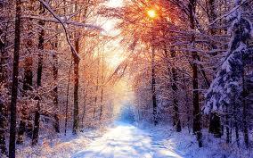 К чему снится зима? Сонник Зима