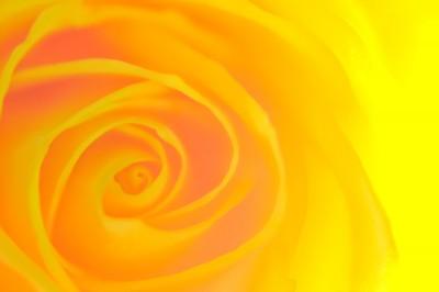 К чему снится желтый? Сонник Желтый