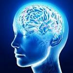 Мозг человека не различает сон и реальность