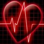 К чему снится сердце? Сонник Сердце