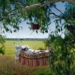 Сон вместе с природой на свежем воздухе