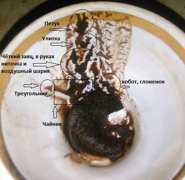 гадание на кофейной гуще что значит жук этих