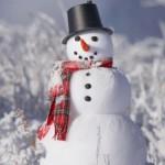 К чему снится снеговик (снежная баба)? Сонник Снеговик (Снежная баба)