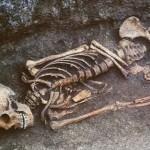 К чему снится скелет? Сонник Скелет