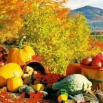 День осеннего равноденствия. Золотая осень: традиции, обряды, сны
